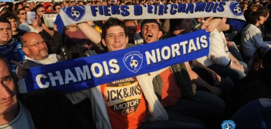 Photos-Chamois-Nmes