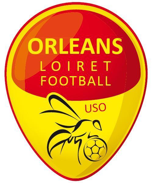 Logo ORLEANS