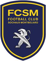 Logo SOCHAUX