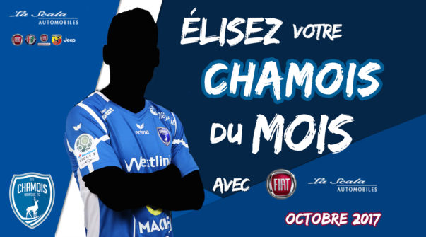 Chamois du mois Octobre 2017
