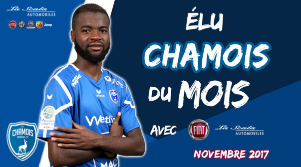 Élu Chamois du mois de novembre 2017