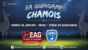 Affiche match à Guingamp