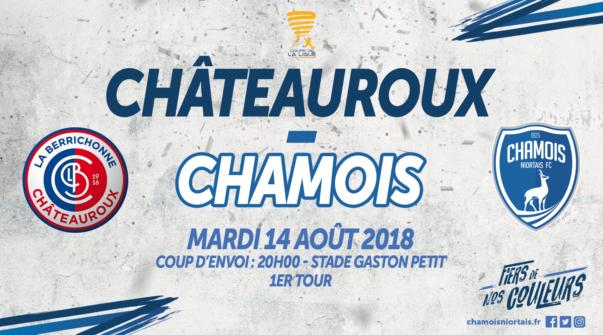 Affiche CDL à Châteauroux