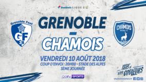 Affiche à Grenoble