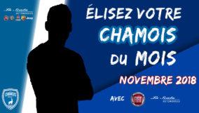 Election Chamois du Mois de Novembre
