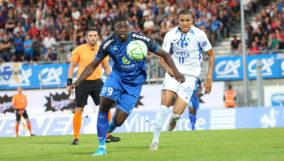 Chamois_Grenoble